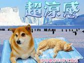 【日本三貴SANKi】寵物涼感冷凝墊 (61X76/cm)