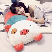 小豬睡覺抱枕靠枕床頭靠墊大靠背公主情侶雙人枕頭床上大號可拆洗HRYC 生日禮物