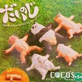 正版 TAMA-KYU 大字仰躺動物 扭蛋 轉蛋 全套5款 COCOS TU002