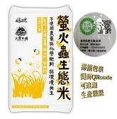 【大倉米鋪】螢火蟲生態米 (花蓮富里)