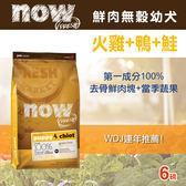 【毛麻吉寵物舖】Now! 鮮肉無穀天然糧 幼犬配方 (6磅) 狗飼料/WDJ推薦/狗糧
