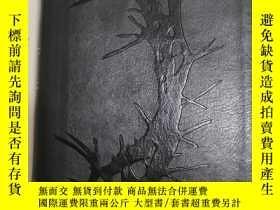 二手書博民逛書店HOLY罕見BIBLE 聖經Y435977 Zondervan 著 Oversea Publishing H