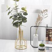 北歐ins透明玻璃花瓶鐵藝花器擺件裝飾品【南風小舖】