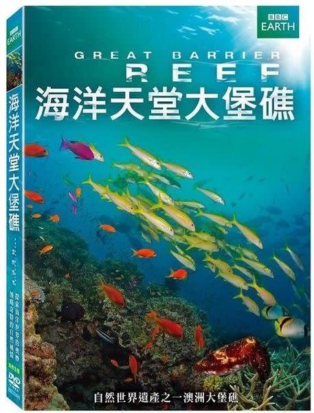 BBC 海洋天堂大堡礁 DVD (購潮8)