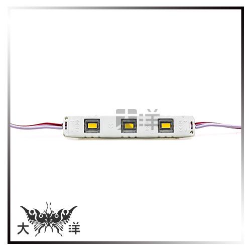 ◤大洋國際電子◢ 5630 LED 3燈 長形模組 50~55Lm (白/暖白/紅/藍/綠/橙) (2pcs) 裝飾 廣告 看板 1062