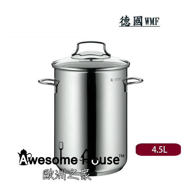 德國 WMF 16cm/4.5L 雙耳 不銹鋼鍋 蘆筍鍋 深鍋 含玻璃蓋 (三件組) #07.9971.6380