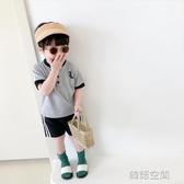 棉小班童裝男童t恤短袖2020夏裝新款寶寶立領POLO衫兒童恐龍上衣