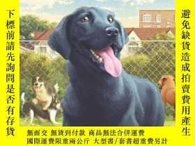 二手書博民逛書店Lucky罕見Dog: Twelve Tales of Rescued Dogs-幸運狗:獲救狗的十二個故事Y