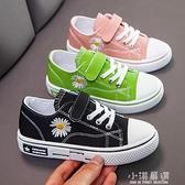 小雛菊兒童帆布鞋韓版男童鞋子休閒女童板鞋寶寶潮百搭2020春新款『小淇嚴選』