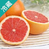 南非葡萄柚3粒(230g±5%/粒)【愛買冷藏】