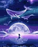 【DT039】銀河夜夢_DIY 數字 油畫 彩繪