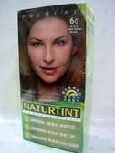 NATURTINT赫本~6G金棕色染髮劑