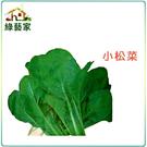 【綠藝家】大包裝A25.小松菜種子20克...