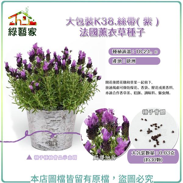 【綠藝家】大包裝K38.絲帶( 紫 )法國薰衣草種子 0.03克(約30顆)
