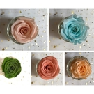 B賣場新色永生花玫瑰,4-5公分,單朵價格
