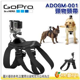 GoPro ADOGM-001 寵物頸帶 公司貨 HERO3 HERO4 寵物綁帶 Fetch Dog Harness