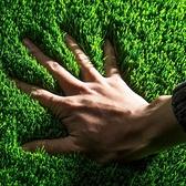 加密人工草坪塑料草坪陽台假草皮幼兒園人造草坪仿真草坪地毯戶外 夏季特惠