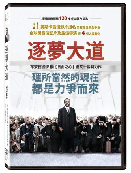 逐夢大道 DVD (購潮8) 4710756647232