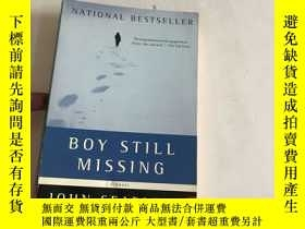 二手書博民逛書店Boy罕見Still MissingY13534 Searles