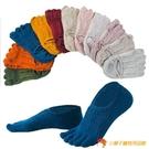 5雙裝 五指襪子女短襪淺口純棉船襪女硅膠防滑隱形【小獅子】