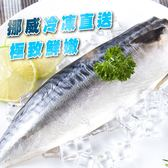 揪團最便宜【吃浪食品】黑潮漁場老饕挪威鯖魚片30片組(185g±10%/1片)