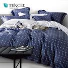 天絲 Tencel 一粒落塵 床包冬夏兩用被 加大四件組  100%雙面純天絲 伊尚厚生活美學