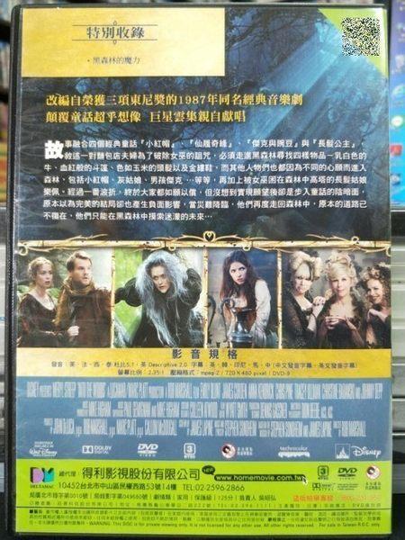 挖寶二手片-P04-327-正版DVD-電影【魔法黑森林】-梅莉史翠普 安娜坎卓克 艾蜜莉布朗 克里斯潘恩