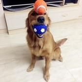 狗狗玩具發聲球球耐咬雪納瑞法斗金毛斗牛薩摩耶專用幼犬磨芽用品
