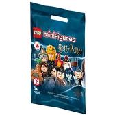 樂高積木Lego 71028 HarryPotter™Series 2