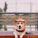 貓咪頭套帽草帽搞笑頭飾遮陽帽寵物狗狗頭盔寵物飾品【小獅子】