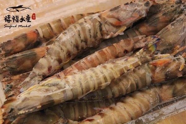 【禧福水產】超大台灣船凍明蝦斑節蝦◇$特價550元/4隻/350g±10%◇最低價 口感扎實/頂級食材 可批發