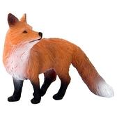 【永曄】collectA 柯雷塔A-英國高擬真動物模型-野生動物系列-赤狐