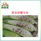 【綠藝家】G04.糯玉米(黑美珍)種子1...