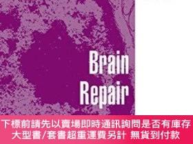 二手書博民逛書店Brain罕見Repair (advances In Experimental Medicine And Biol