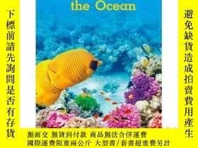 二手書博民逛書店I罕見See the OceanY346464 Katie Pe