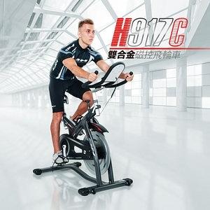 【BH】FC2 Indoorbike雙合金磁控飛輪車