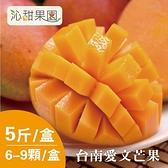 沁甜果園SSN.台南愛文芒果(6-9粒裝/5台斤)﹍愛食網