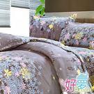 雙人床罩 / 兩用被四件組 (海露) 含兩件鋪棉枕套 活性絲柔棉 好夢寢具台灣製