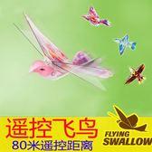 大號遙控小鳥玩具飛鳥仿真撲翼鳥會飛的鴿子充電男女兒童飛行新奇 可可鞋櫃