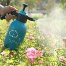 一棵樹噴壺手動氣壓式澆花壺小型噴霧器多肉綠植物灑水壺霧化器 {快速出貨}