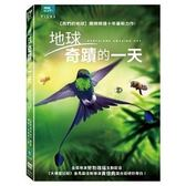 地球 奇蹟的一天 DVD | OS小舖