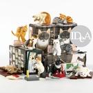 貓咪公仔擺飾  創意擺飾玩具 禮物 交換...