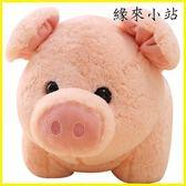 本命年 可愛豬豬公仔玩偶粉色小豬毛絨玩具陪睡娃娃豬年吉祥物兒童禮物女