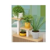 桌面小花架 鐵藝多肉花架子陽台置物架室內辦公室桌面迷你多層植物小花架