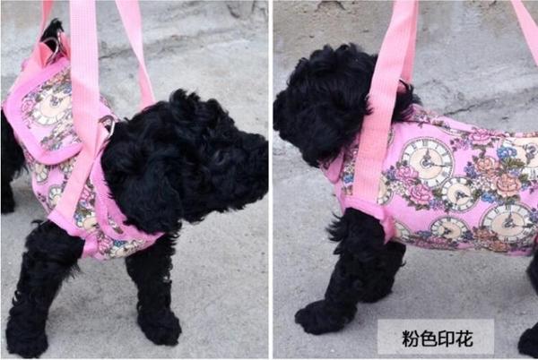 寵物背包手提包四腳寵物挎包