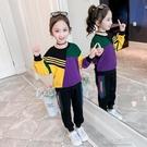 運動套裝秋冬純棉女童加絨套裝兒童裝網紅洋氣中大童春秋季時髦運動兩 快速出貨