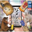 全套5款【日本正版】自拍動物 扭蛋 轉蛋...