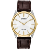 CITIZEN 星辰 Eco-Drive 光動能紳士薄型手錶-金圈x咖啡/38mm AR3074-03A