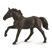【永曄】collectA 柯雷塔A-英國高擬真動物模型-野生動物-農聶斯公馬