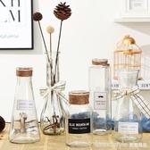 小清新簡約透明花瓶創意玻璃客廳擺件裝飾品水培插花干花花器 YDL  LannaS